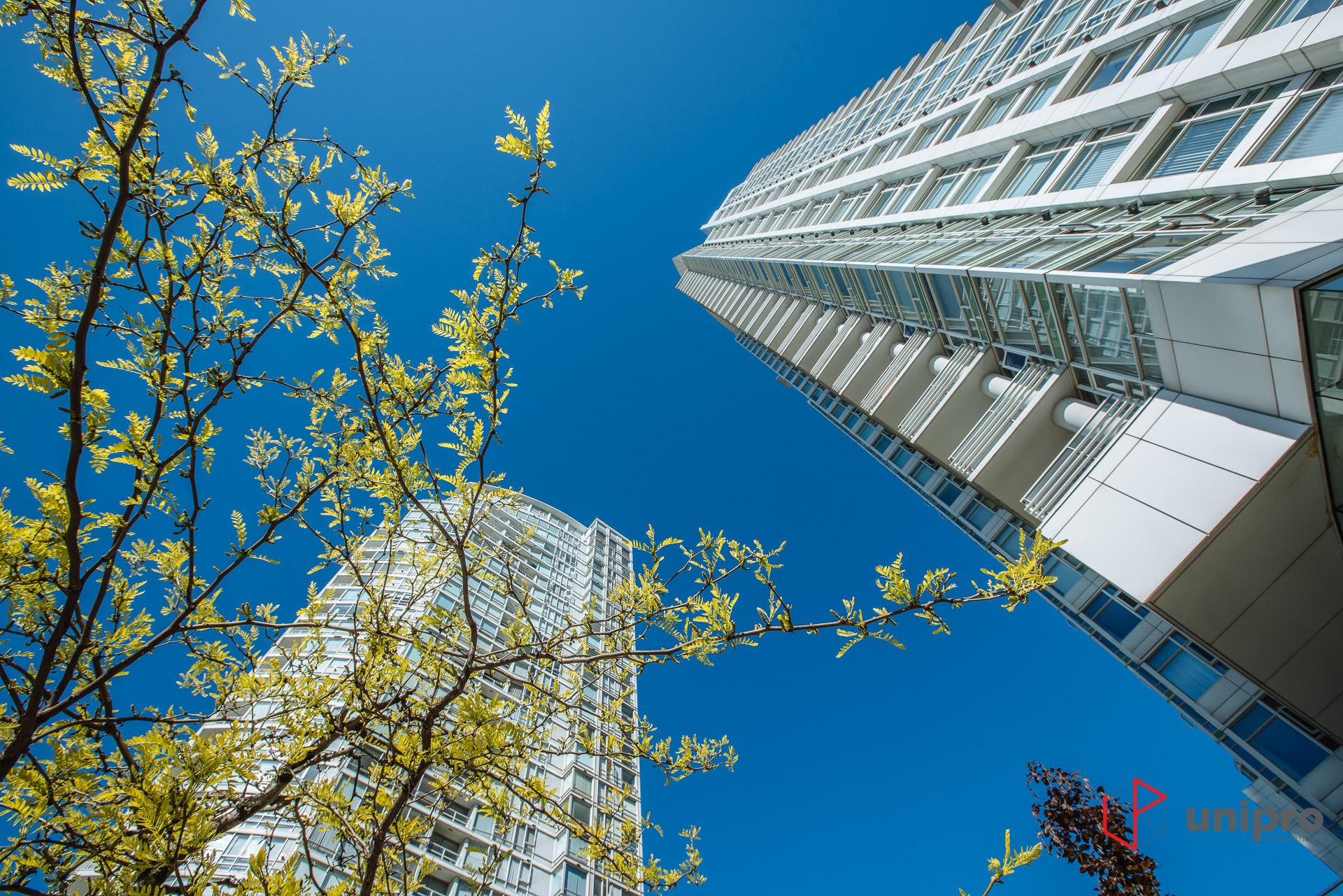 Vancouver-Yaletown-Renovation-8